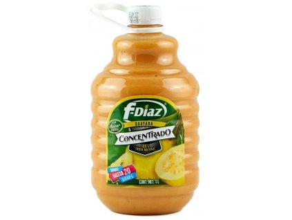 CFM Mango Konzentrat 1 Lt (Onhe Zucker)